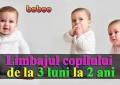 Limbajul copilului de la 3 luni la 2 ani - ce semnale ne dă