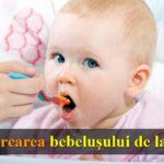 bebelus care mananca piure