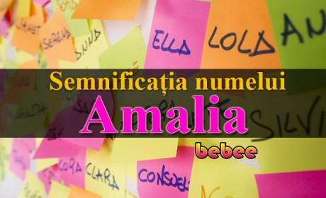 Semnificația numelui Amalia